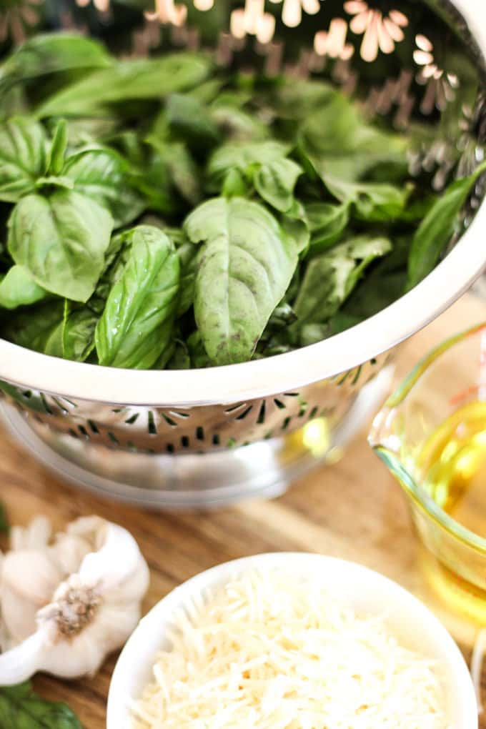 How to Use Basil to Make Pesto