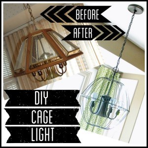 DIY Cage Light