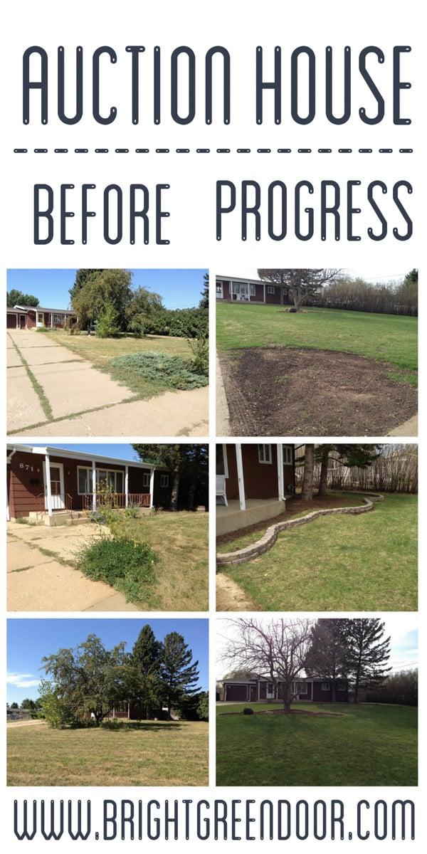 Auction House Yard Progress