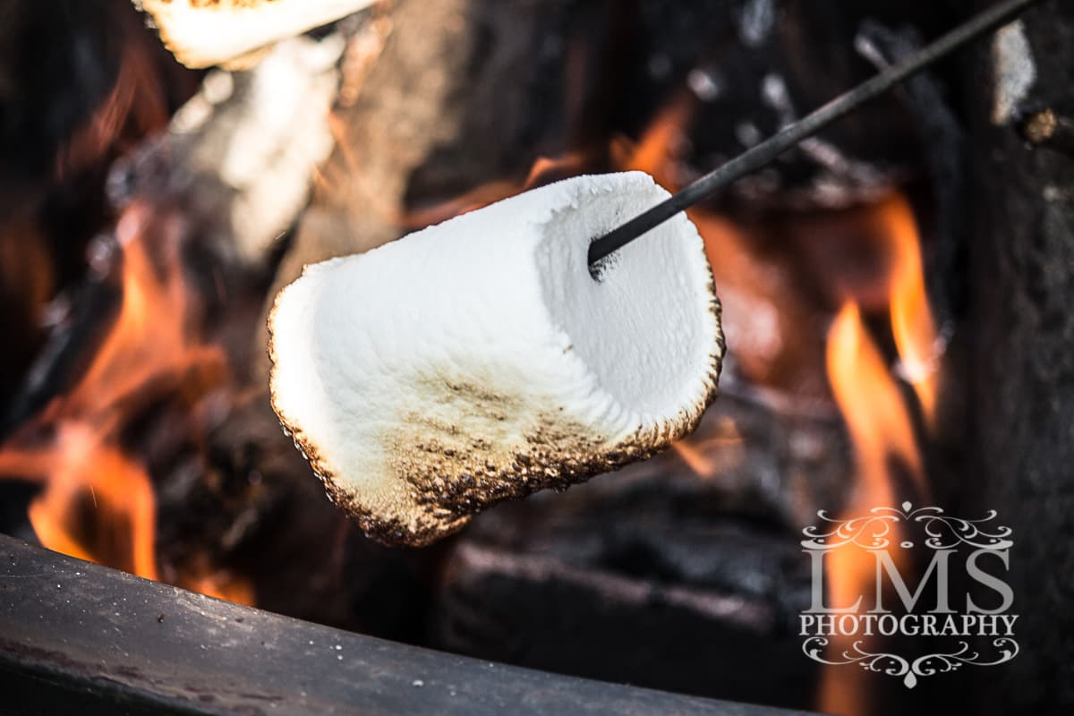 Flaming Marshmallow for S'More Bar