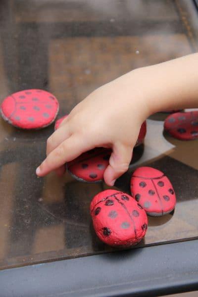 Ladybug Painted Rocks for Ladybug Hunt