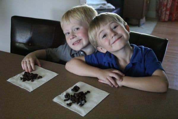 California Raisins for Healthy Snacking