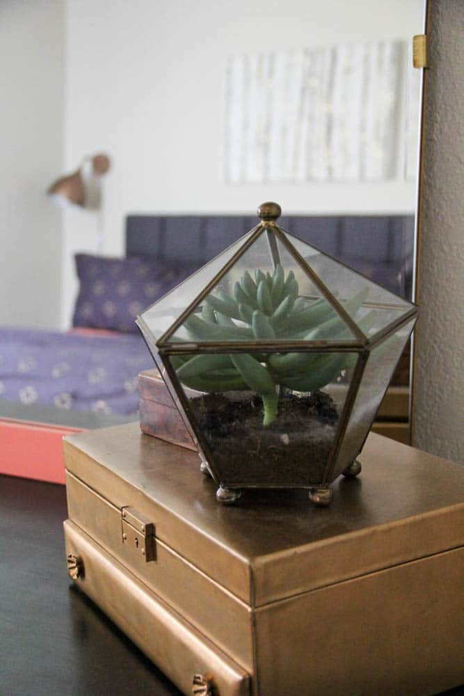 Vintage Terrarium in Bedroom
