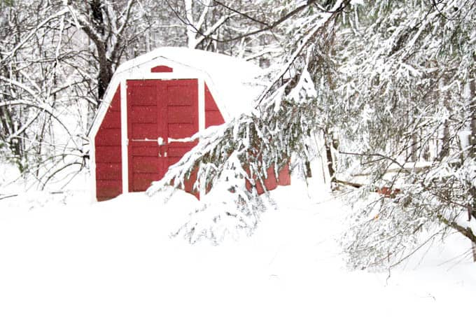 Red Barn in the Woods Picture
