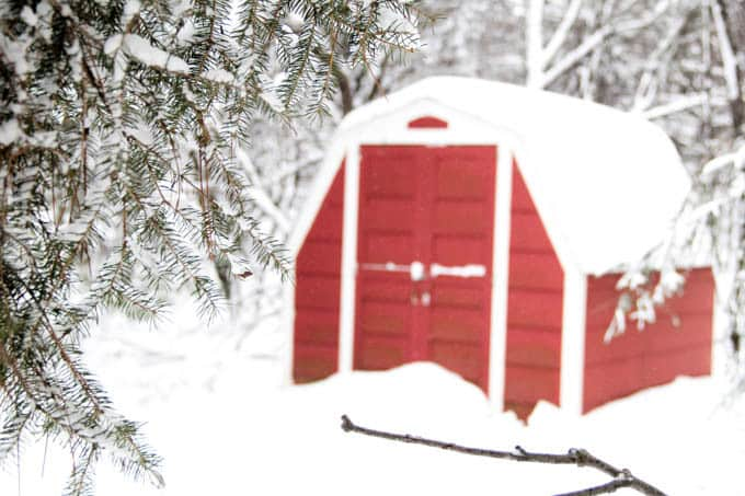 Red Shed in the Snow Picture
