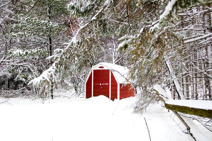 Red Shed Winter Picture