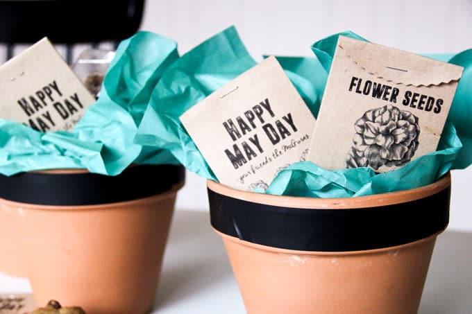 May Day Basket Gift