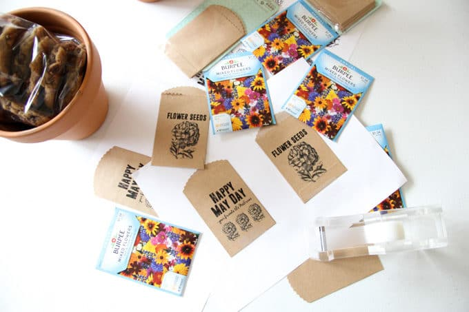 DIY Printable Seed Packets