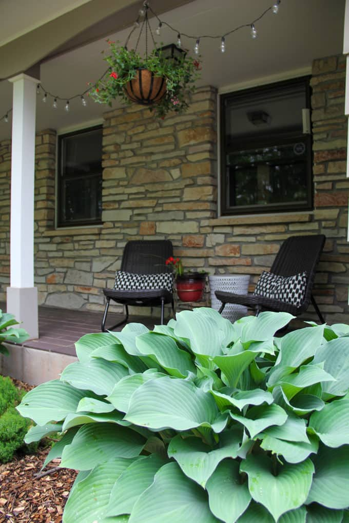 Hosta in fron tof Modern Porch