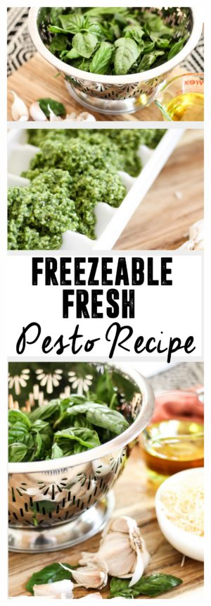 Freezable Fresh Pesto Recipe