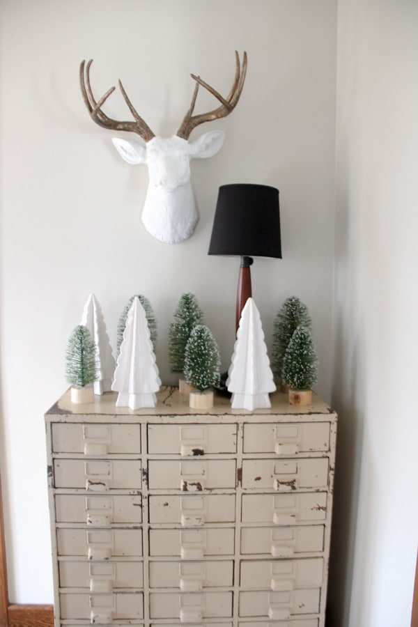 Bottle Brush and White Taxidermy Display