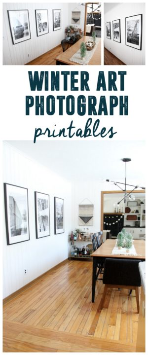 Free Winter Photograph Printables