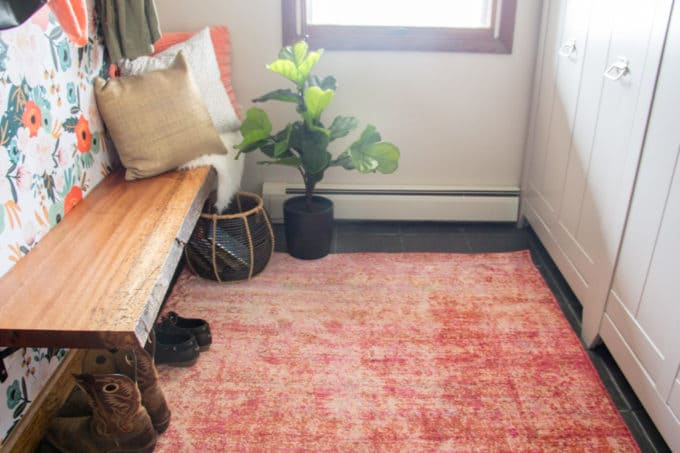 Modern Mudroom with Orange Rug