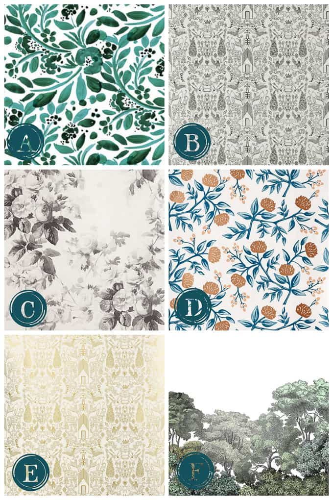 "Contains Affiliate Links** A. Spoonflower Jade Floral B. Hygge & West Nethercote Black C. Anthropologie Smoky Rose **Update** I ended up using ""C"" in our ..."